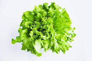 Top view of green leaf lettuce salad on white background