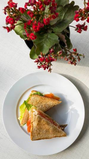 Top view - Sandwiches with smoked salmon, tomatoes and salad on a white plate