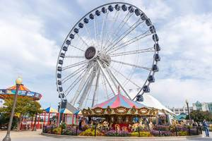 Tourist attraction in Chicago: Ferris wheel at Navy Pier