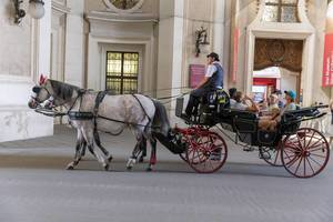 Tourists riding in a Viennese carriage