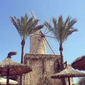 Trainingslager Mallorca. #Windmühle #instapic #picoftheday #training #sports #triathlon #im703