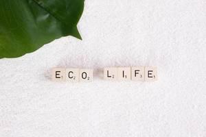"""Tropenblatt auf weißem Handtuch, neben dem Text """"Eco Life"""" / Öko-Leben"""