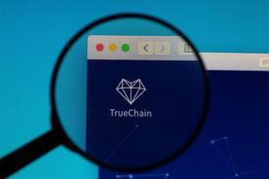 TrueChain logo under magnifying glass