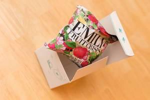 Tür 15: Apfel Fruchtchips / Fruit Crisps