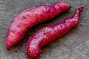 Two fresh ripe sweet potato root vegetables