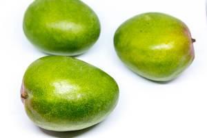 Unripe mangos on white background