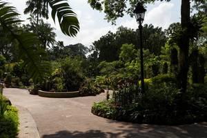 Üppiger Garten in Singapur