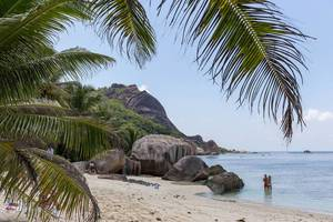 Urlauber vor Granitfelsen hinter Palmenblätter am Anse Union Strand auf der Seychelleninsel La Digue