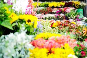 Variety of flowers in a flower shop