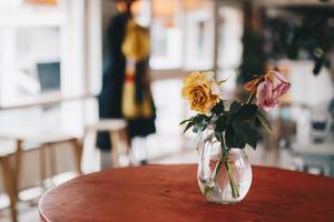 Vase with flowers in a cafe. Colorful blurry background.