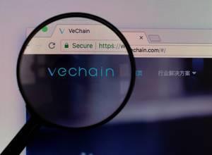 Vechain-Logo am PC-Monitor, durch eine Lupe fotografiert