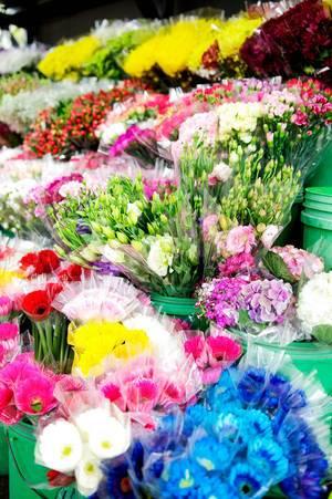 Verschiedene Blumensträuße bei einem Blumenverkäufer stehen in Eimern zum Verkauf bereit