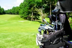 Verschiedene Golfschläger in einer Golftasche auf einem Golfplatz