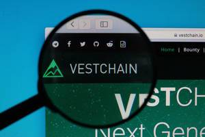 Vestchain logo under magnifying glass
