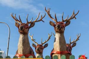 Vier Rentierköpfe vor blauem Himmel am Kölner Rudolfplatz
