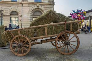 Wagon with hay on square in Ljubljana, Slovenia