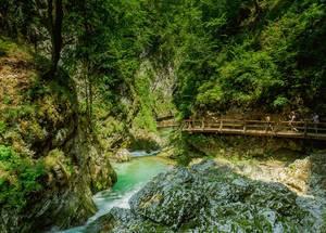 Walking in Vintgar Gorge