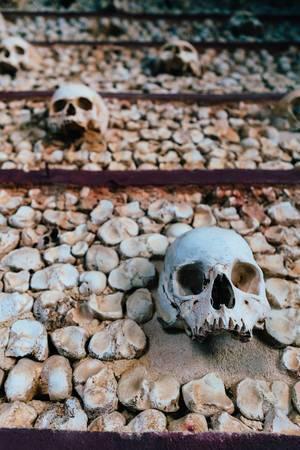 Wall decorated with skulls at Igreja do Carmo