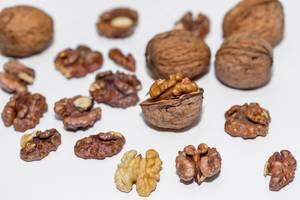 walnut  Flip 2019