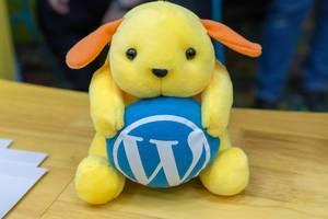 Wapuu Plüschtier mit blauem Wordpress-Logo auf dem BarCamp Bonn