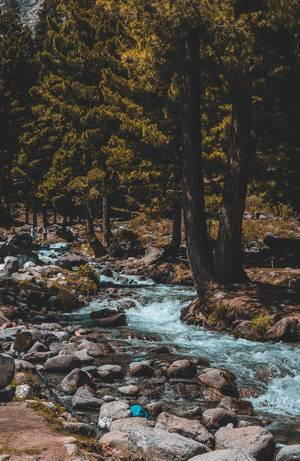 Water Flowing.  Flip 2019