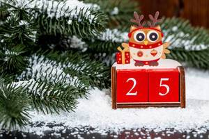 Weihnachts Konzept - Erster Weihnachtsfeiertag - Eule auf Nummer 25
