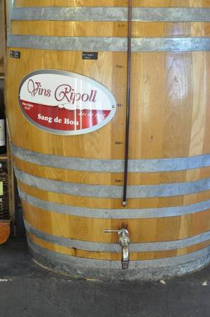Weinfass in Pollenca