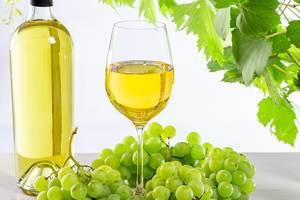 Weinhintergrundbild: Reife, frische Trauben, eine gefüllte Weinflasche und Glas unter grünen Zweigen mit Blättern