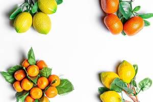 Weiße Fläche mit Kühlschrankmagneten in Zitronen- und Mandarinenform an den Rändern
