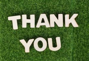 Weiße Holzbuchstaben bilden den Text THANK YOU (vielen Dank) auf grüner Wiese