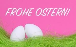 Weiße Ostereier auf grünem Gras vor Text Frohe Ostern auf rosa Hintergrund