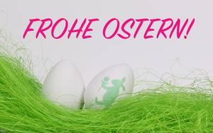 Weiße Ostereier auf grünem Gras vor Text Frohe Ostern auf weißem Hintergrund