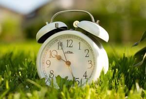 Weißer Wecker im Vintagestil mit goldenen Uhrzeigern, im grünen Gras unter Sonnenlicht