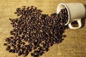White Cup Spilling Coffee Grains