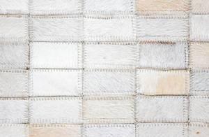 White short Fur Background