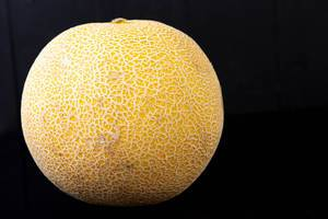 Whole Melon isolated above black background (Flip 2019)