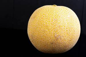 Whole Melon isolated above black background