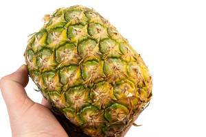 Whole Pineapple in the Hand on the white background