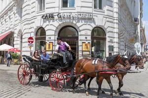 Wiener Fiaker fährt am Café Griensteidl vorbei