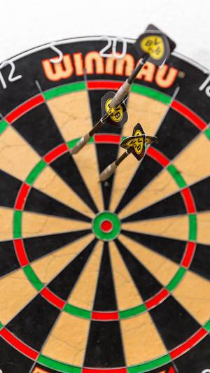 Winmau dartboard with BVB darts