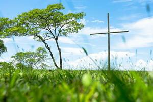 Wooden cross standing on a large grass field