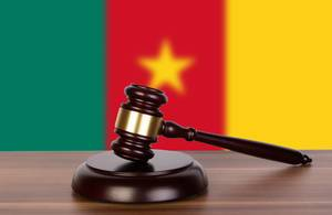 Wooden gavel and flag of Cameroon
