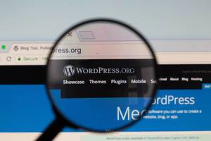Wordpress-Logo am PC-Monitor, durch eine Lupe fotografiert