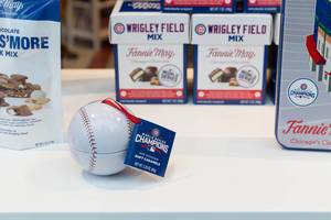 World Series Champions Baseball-Ball