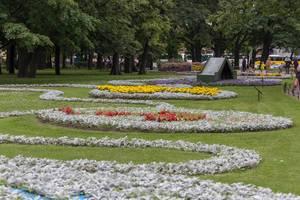 Wunderschöne Blumen im Alexandergarten in Sankt Petersburg