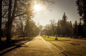 Wunderschöner Park in Marburg an der Drau