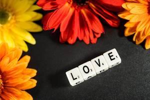 """Würfel zeigt das englische Wort für Liebe """"Love"""", umgeben von Blumen in warmen Farben"""