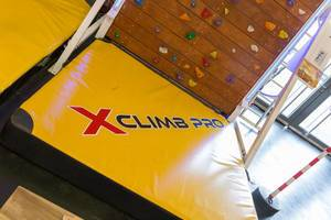 X-climb Pro climbing wall