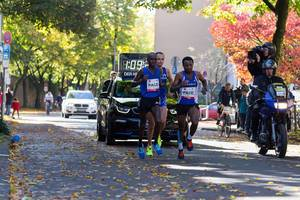 Yasa Kaan, Pfeiffer Hendrik and Seboka Mitku giving their all - Cologne Marathon 2017