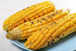 Young yellow corn grill closeup (Flip 2019)